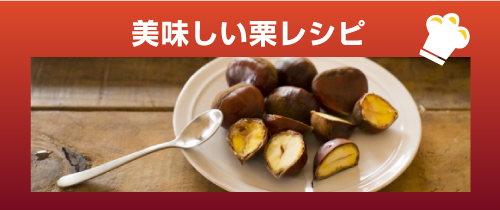 美味しい栗レシピ